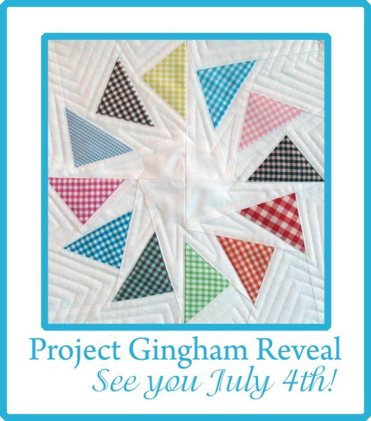Project Gingham!!