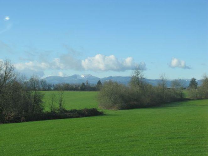 Countryside1