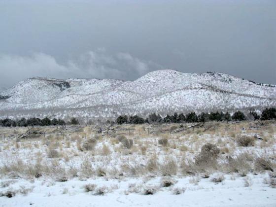 SnowyDay