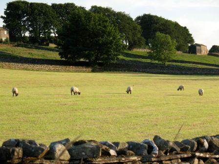 YorkshireDales1