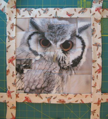 Congruence Owl 2