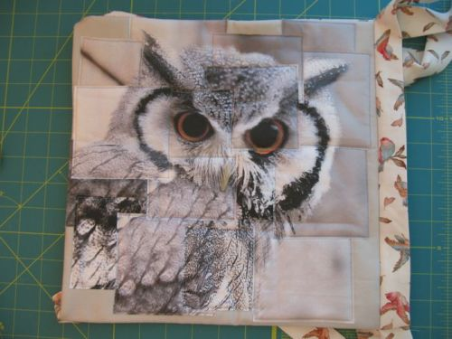 Congruence Owl 3