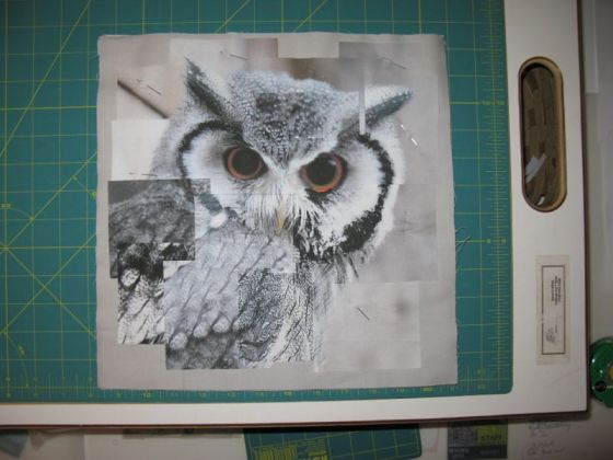 Congruence Owl quilt 2 layout
