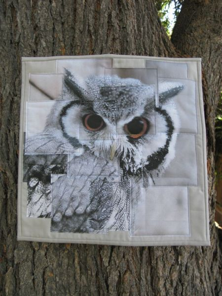 Congruence Owl quilt front 2