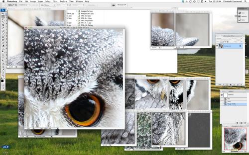 OWL ps desktop