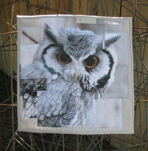 Congruence Owl quilt front