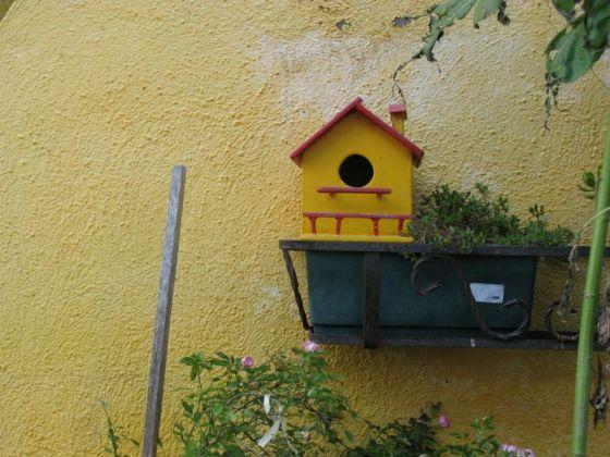 Birdhouse Burano