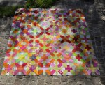 Libellen Quilts Cross-X