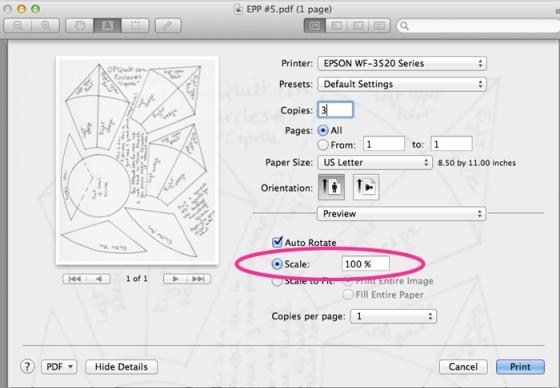 Printer Settings 100percent