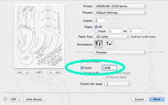Printer Settings 1_7