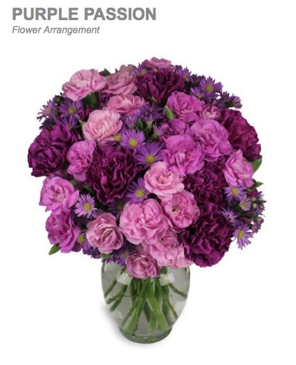 PurplePassion4