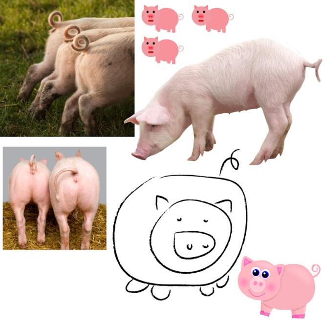 piggy-tails-composite