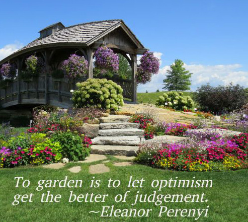 Optimism in the Garden.jpg