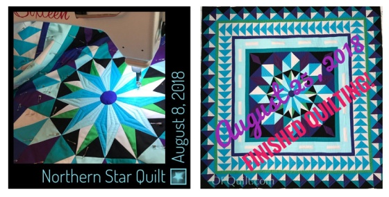 Northern LIghts Medallion quilting