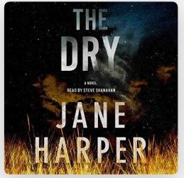 The Dry_novel