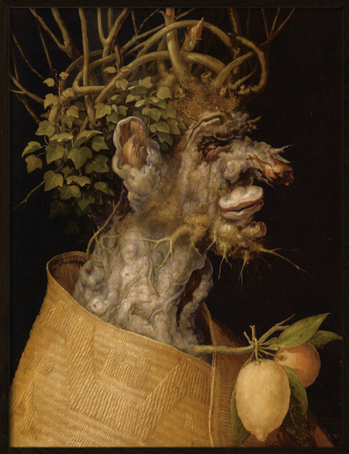 Arcimboldo Winter